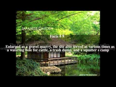 Fort Worth Japanese Garden Top # 41 Facts
