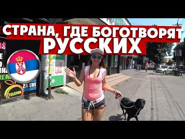 БЕЛГРАД: здесь боготворят русских и Путина!