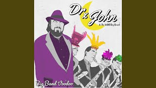 Watch Dr John There Must Be A Better World Somewhere feat WDR Big Band video