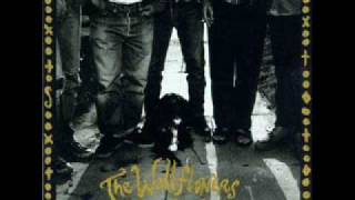 Watch Wallflowers Sugarfoot video