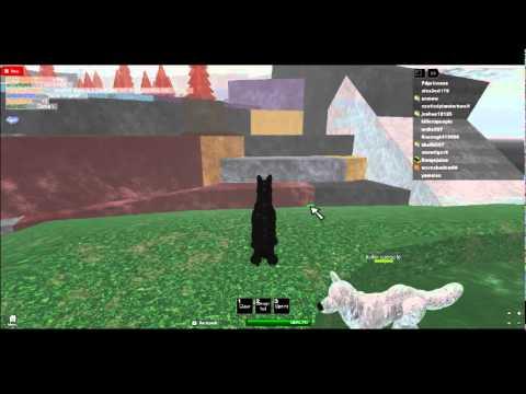 3d wolf rpg online