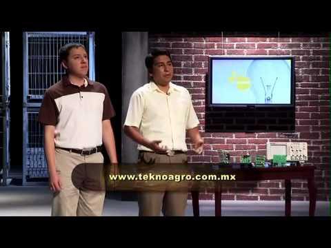 """Programa """"Emprendedores"""" Del Once TV México"""