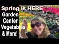 Spring Plants at Garden Center Store Vegetables Tomatoes Peppers Blueberries Flowers