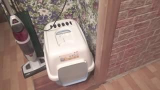 Закрытый кошачий туалет, домик для Мейн-Кунов -отзыв.