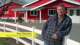 Bc Egg Farmers