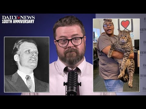 DAILY NEWS WEEKLY: Philadelphia fat cat; and a 'Billy Graham rule' lawsuit