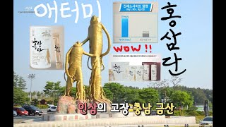 애터미 절대제품 홍삼단 메이킹 | 절대품질 절대가격 애…