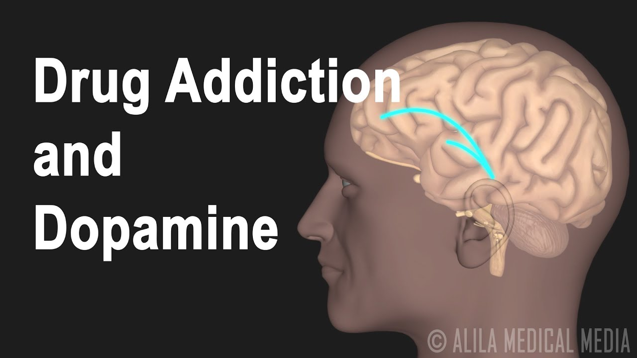 Mechanism of Drug Addiction in the Brain, Animation