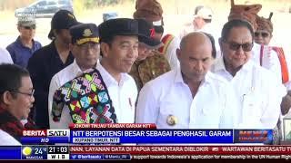 Jokowi Dapati NTT Berpotensi Besar Produksi Garam