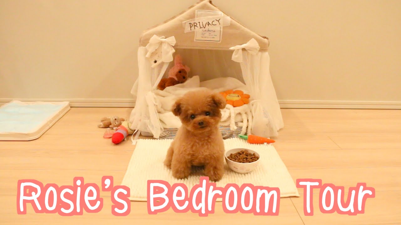 Rosie\'s Bedroom Tour - YouTube