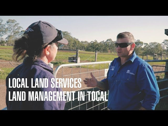Local Land Services: Tocal