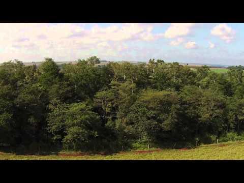 Corredor de Biodiversidade Santa Maria || Santa Maria Biodiversity Corridor