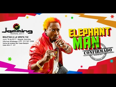 Especiales Jamming Festival 2017 - Elephant Man (Jamaica)