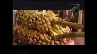 Ambalapuzhe unnikannanodu Nee - Malayalam Film Song