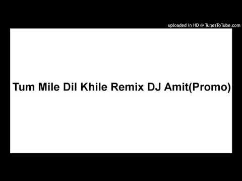 Tum Mile Dil Khile Remix DJ Amit(Promo)