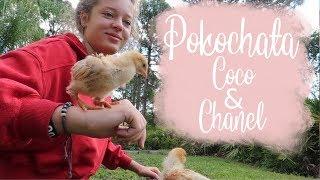 Oliwia pokochała Coco & CHANEL! Życie w USA