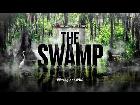 The Swamp | Coming to American Experience