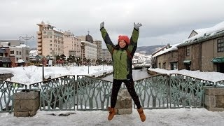 日本 北海道 札幌市 小樽 登別 雪風景 陳瑞添