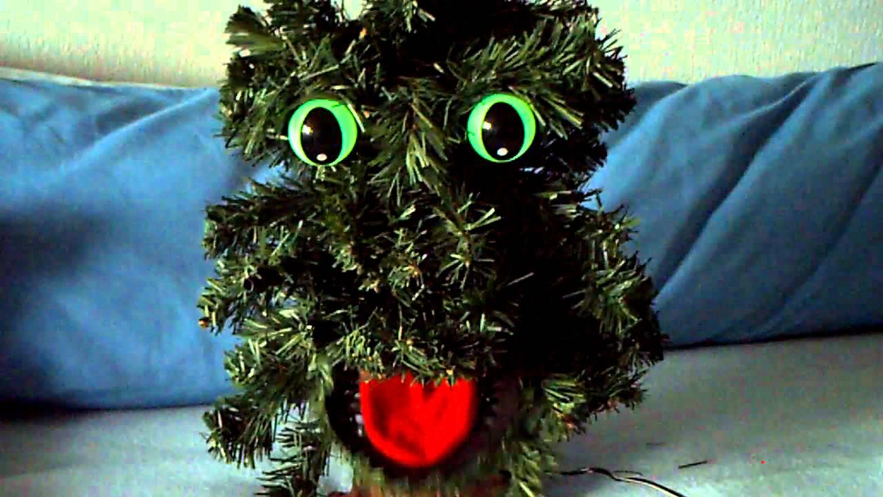 Singing Douglas Fir (Christmas Tree)