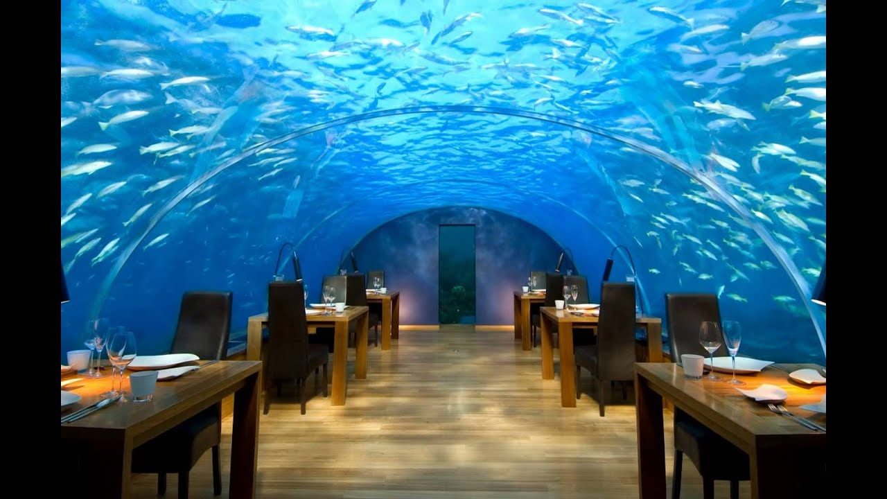 dubai underwater hotel pictures - YouTube