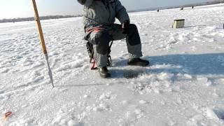 видео Зимняя рыбалка на окуня снасти