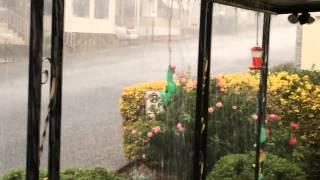 Heaviest rain ever! downpour