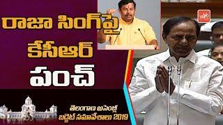 CM KCR Satires On BJP MLA Raja Singh In Telangana Assembly | Harish Rao | YOYO TV Channel
