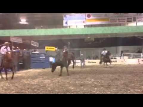 Noah suchorab-Tisdale CCA rodeo 2015