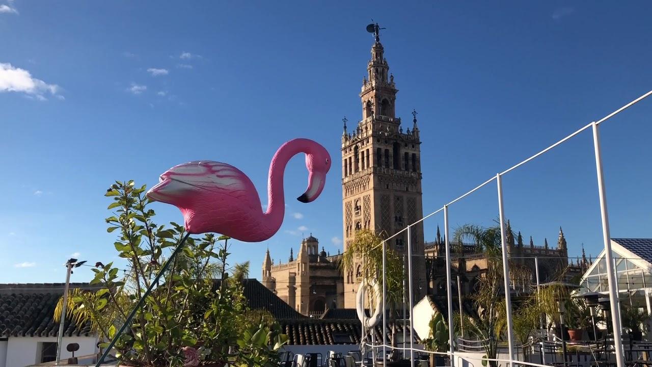 Puravida Terraza Hotel Fontecruz Sevilla Seises Youtube