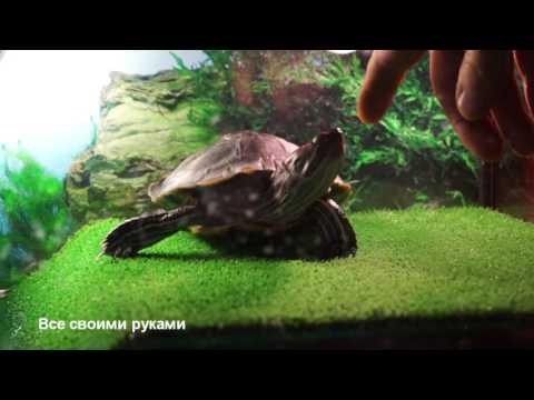 Поговорим о лампах для красноухих черепах! ОЧЕНЬ ВАЖНАЯ ИНФОРМАЦИЯ!/Talk about lights slider turtle!