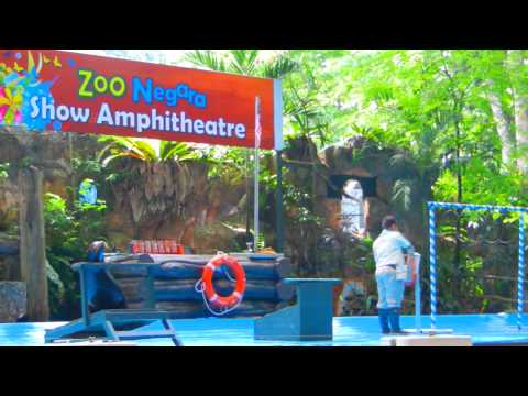 zoo negara  jul 2011