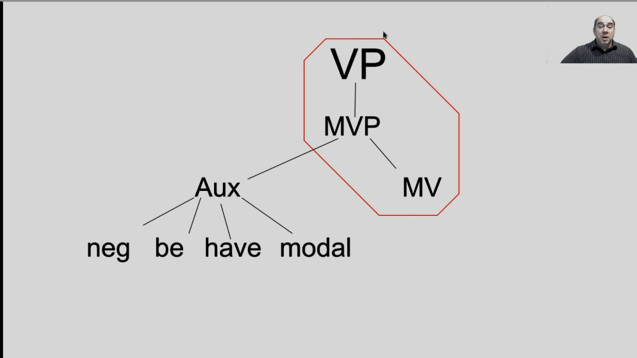 basic tree diagramming components youtube