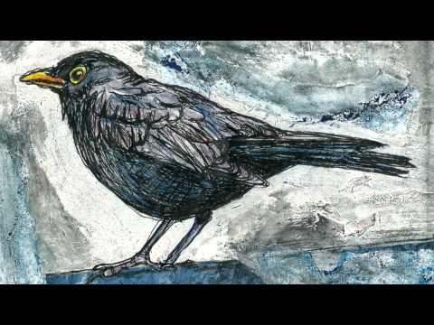 Lee DeWyze - Blackbird's song