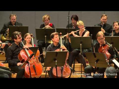 W. A. Mozart: Symphony No. 40 in g minor, K. 550, I. Molto allegro