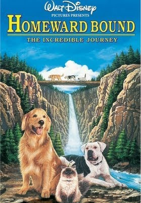 Image result for Homeward Bound: The Incredible Journey
