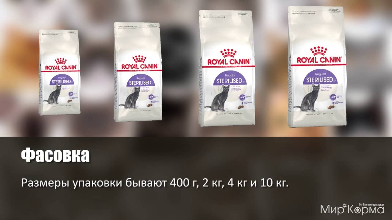 royal canin sterilised 37 youtube. Black Bedroom Furniture Sets. Home Design Ideas