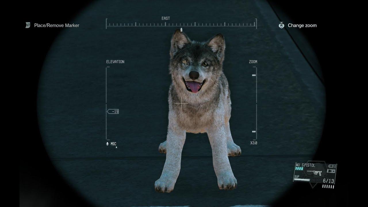 Mgsv D Dog Puppy