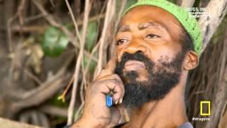 Drugs, Inc - Jamaican crack addict interview (ORVILLE)