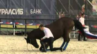 Акробатические трюки на лошадях на Красной площади