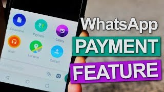 WhatsApp Payment has Arrived on Android and IOS