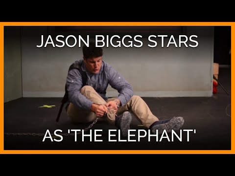 Jason Biggs Stars as 'The Elephant' in PETA Video