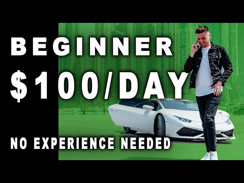 Beginners Can NOW MAKE $100/DAY Dropshipping Consistently | Shopify Dropshipping 2019 thumbnail