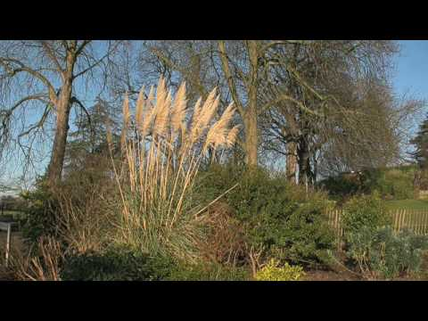 The People at Horniman - Gordon Lucas, Garden Mana...