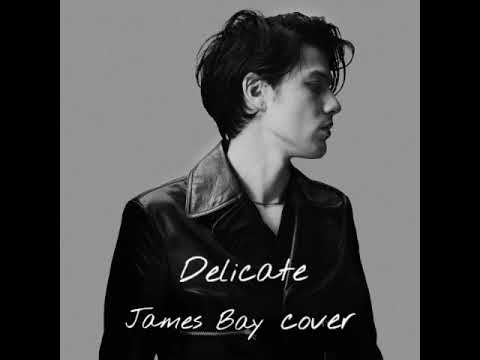 Taylor Swift - Delicate (James Bay Cover)