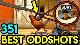 CHICKEN BLOCKS HIS VISION ! - CS:GO BEST ODDSHOTS #351