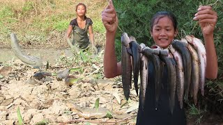 Life skills: Catching Fish in Mud Lake to Grilled for lunch - Survival skills Anywhere Ep 90