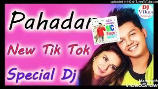 Pahadan Dj Remix  New Tik Tok Vairal  Dj