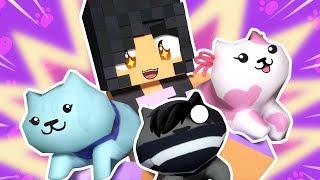 Itty Bitty Kitties! | Hide and Seek Minecraft