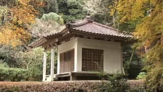 奈良県 正暦寺の紅葉