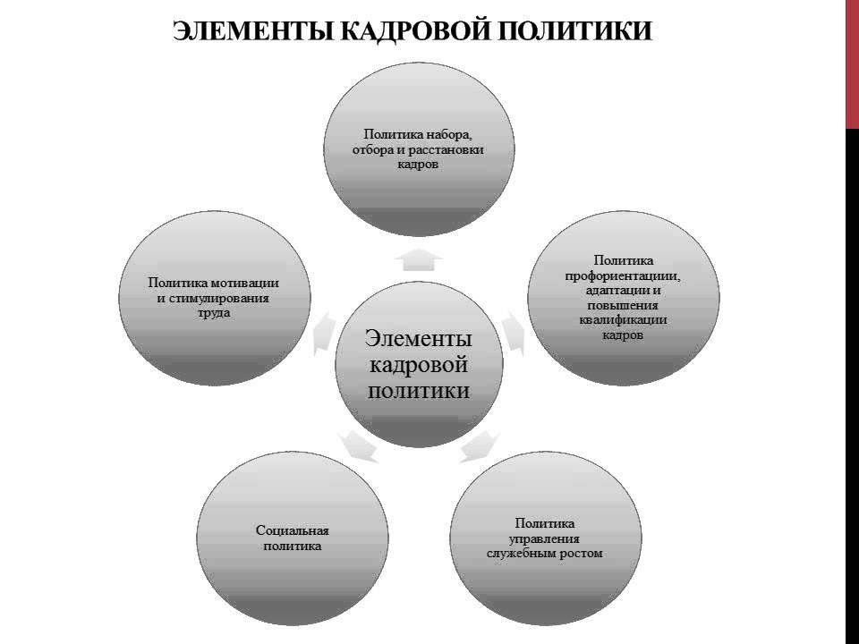 Дипломная работа Совершенствование кадровой политики предприятия  Дипломная работа Совершенствование кадровой политики предприятия